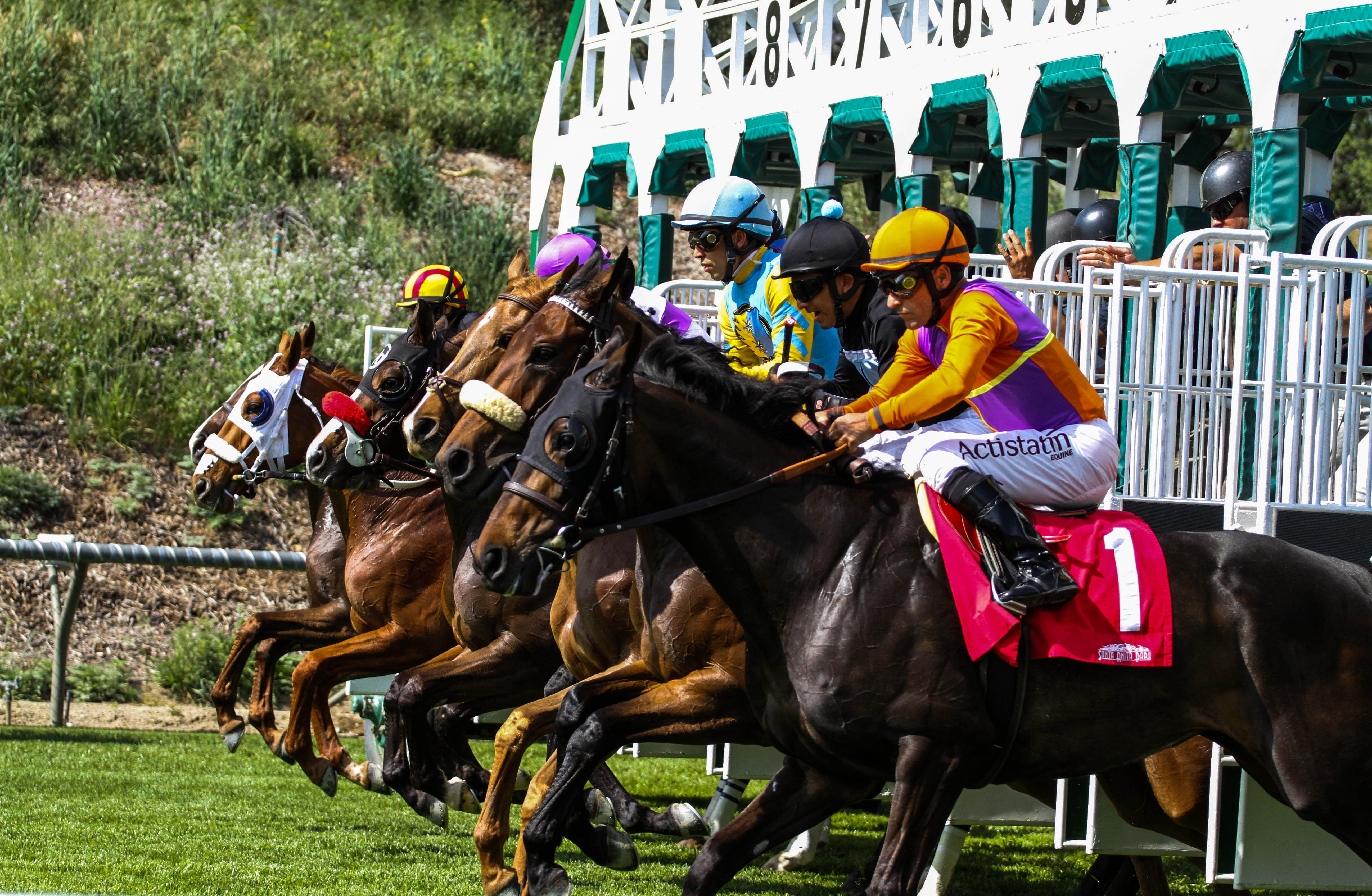 Jeff Siegel's Blog: Santa Anita Analysis March 25, 2016