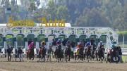 Jeff Siegel's Blog: Santa Anita Analysis for May 22, 2016