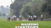 Jeff Siegel's Blog: Wagering Strategies (GP, SA) for Feb. 19, 2017