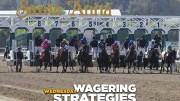Jeff Siegel's Blog: Wagering Strategies (Dmr, Sar) for August 16, 2017