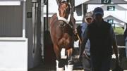 It's Post Time by Jon White: Kentucky Derby Recap