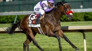 On Track with Johnny D: 2016 Preakness Analysis