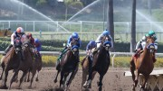 Jeff Siegel's Blog: Wagering Strategies for August 12, 2016