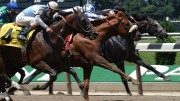 Jeff Siegel's Blog: Wagering Strategies for August 6, 2016