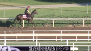 Leverage Plays: Betting the Breeders' Cup Filly and Mare Turf
