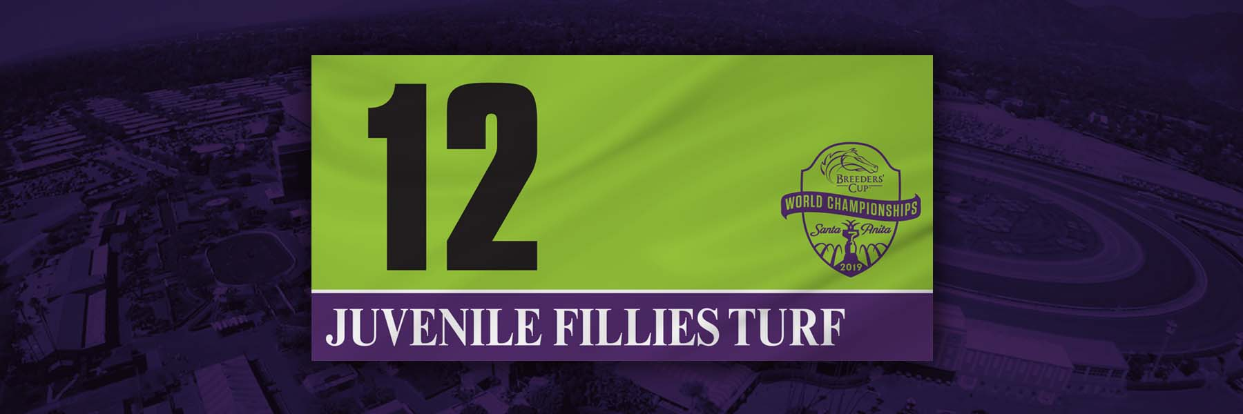 Breeders' Cup Juvenile Fillies Turf Analysis and Betting Strategies for November 1st, 2019