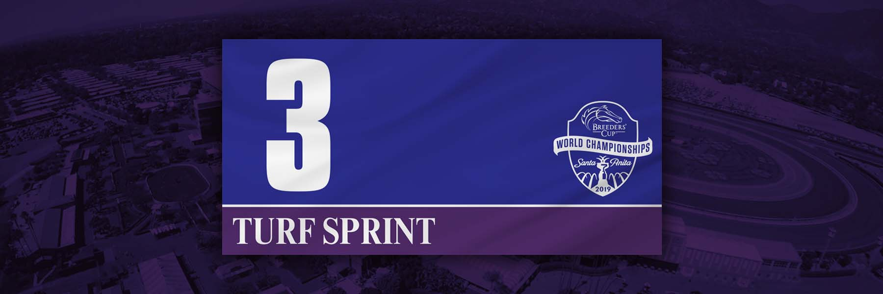 Breeders' Cup Turf Sprint Analysis and Betting Strategies for November 2nd, 2019