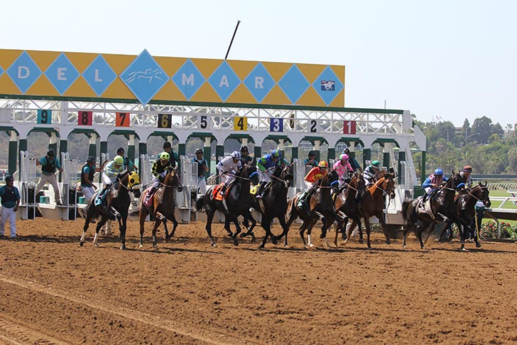 Jeff Siegel's Blog: Del Mar Analysis & Wagering Strategies for Friday, November 15, 2019