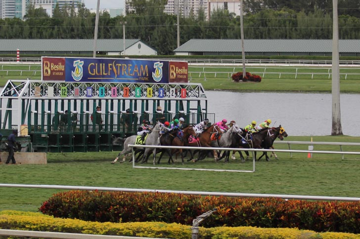 Musings From My Grade One Couch: Gulfstream Park Analysis for May 1st, 2020