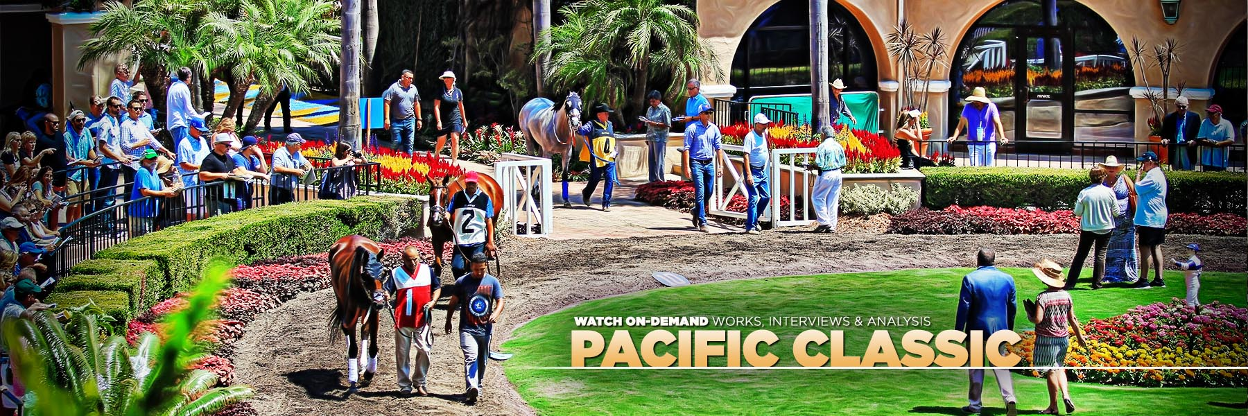Jeff Siegel's Blog: Del Mar Analysis & Wagering Strategies for Saturday, August 21, 2021
