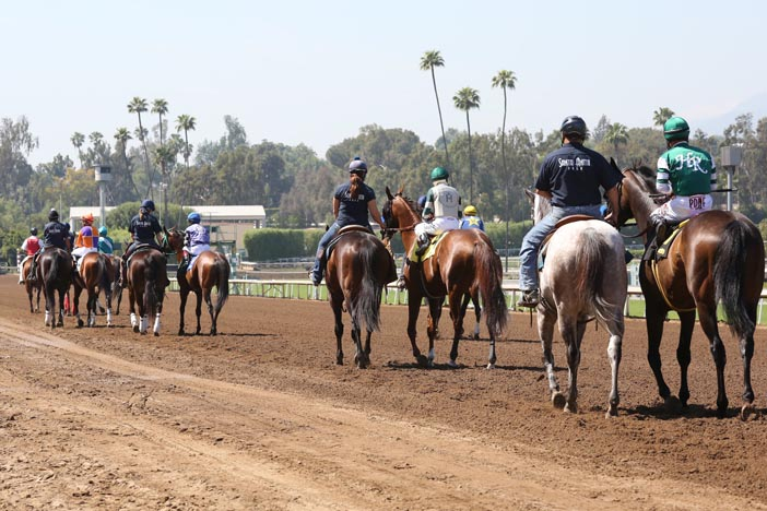 Jeff Siegel's Blog: Santa Anita Analysis April 8, 2016
