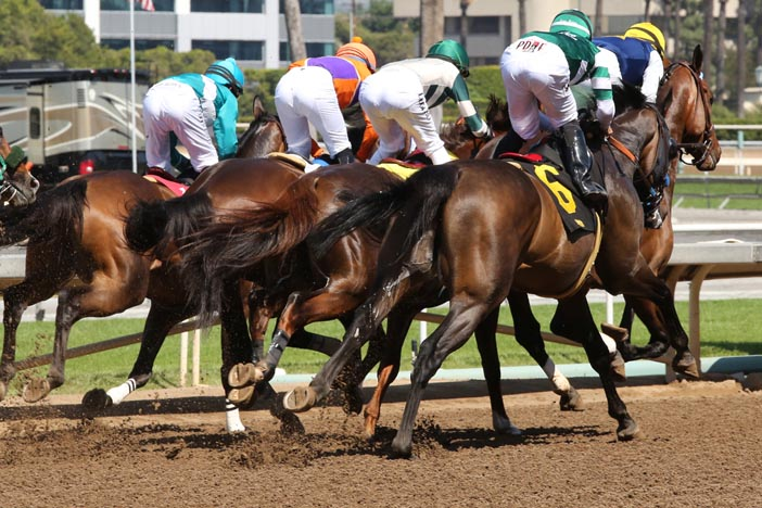Jeff Siegel's Blog: Santa Anita Black Book