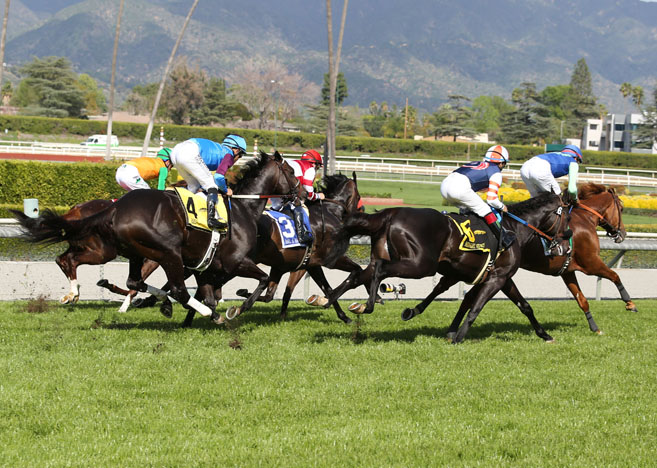 Jeff Siegel's Blog: Santa Anita Analysis for June 3, 2016