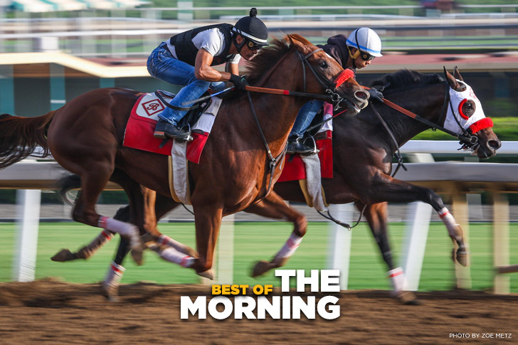 Jeff Siegel's Best of the Morning – Key Workouts at Santa Anita
