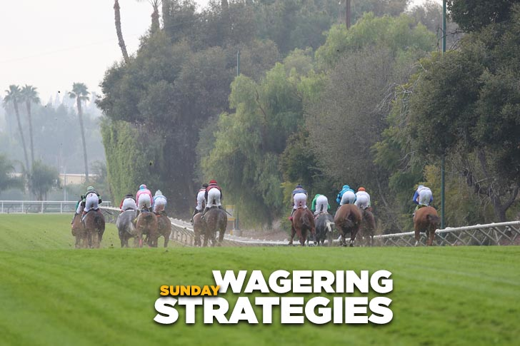 Jeff Siegel's Blog: Wagering Strategies (SA, GP) for Feb. 12, 2017
