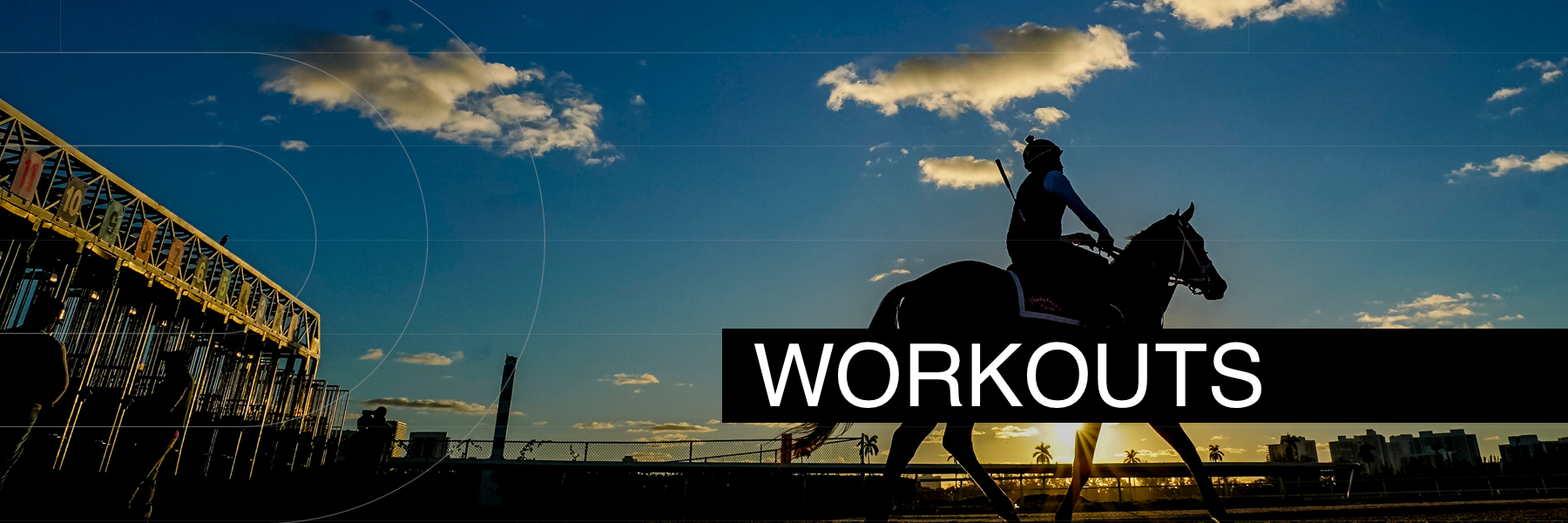 Jeff Siegel's Blog: 2021 Florida Derby-G1 Workout Commentary and Analysis