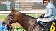 Jeff Siegel's Blog: Santa Anita Analysis Feb. 27, 2016