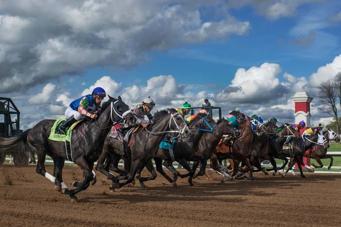 Jeff Siegel's Blog: Tampa Bay Downs Analysis & Wagering Strategies for Wednesday, April 8, 2020