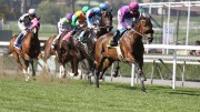 It's Post Time by Jon White: Baze Calls It a Career