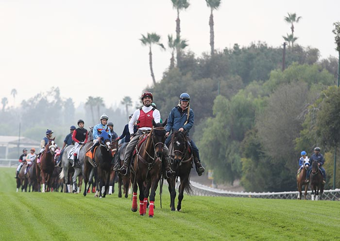 Jeff Siegel's Blog: Santa Anita Analysis for May 27, 2016