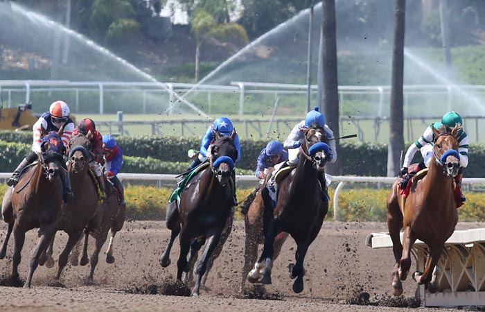 Leverage Plays: Late Pick 4 Analysis at Santa Anita Park on February 17th, 2018