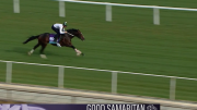 Leverage Plays: Betting the Breeders' Cup Juvenile Turf
