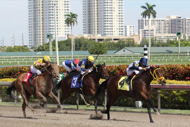 A Few Musings from My Grade One Couch: Gulfstream Park Analysis for May 21st, 2020
