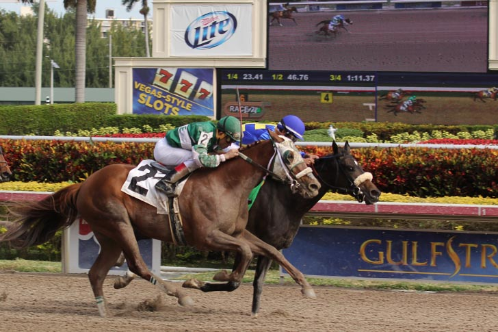 Leverage Plays: Late Pick 5 Analysis at Gulfstream Park on March 28th, 2020