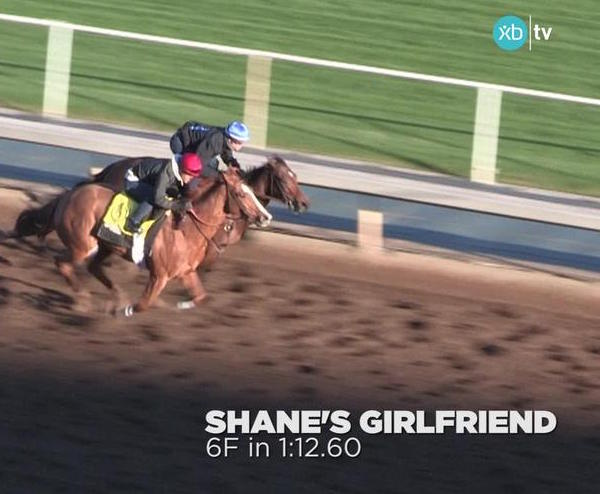 XBTV's Leverage Plays: Late Pick 4 at Fair Grounds on February 25th, 2017