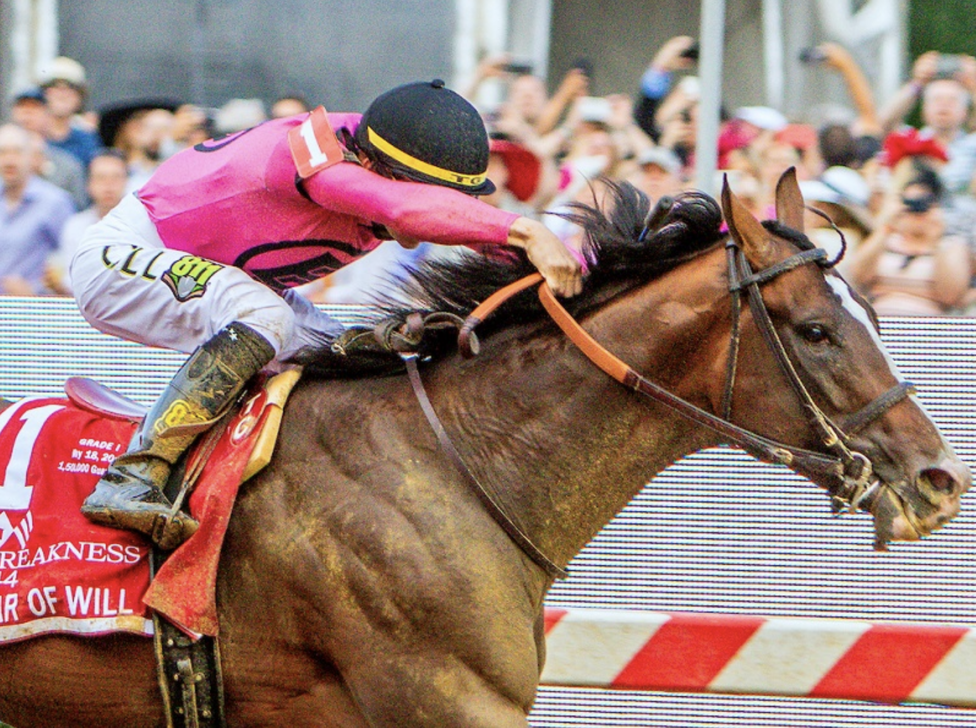 It's Post Time by Jon White: War of Will Comes Through in the Preakness
